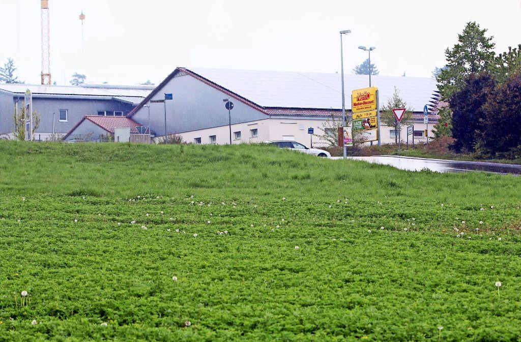 Auf dem Gelände gegenüber dem Netto ist bislang grüne Wiese. Dort könnte sich bald Aldi niederlassen. Foto: Andreas Gorr