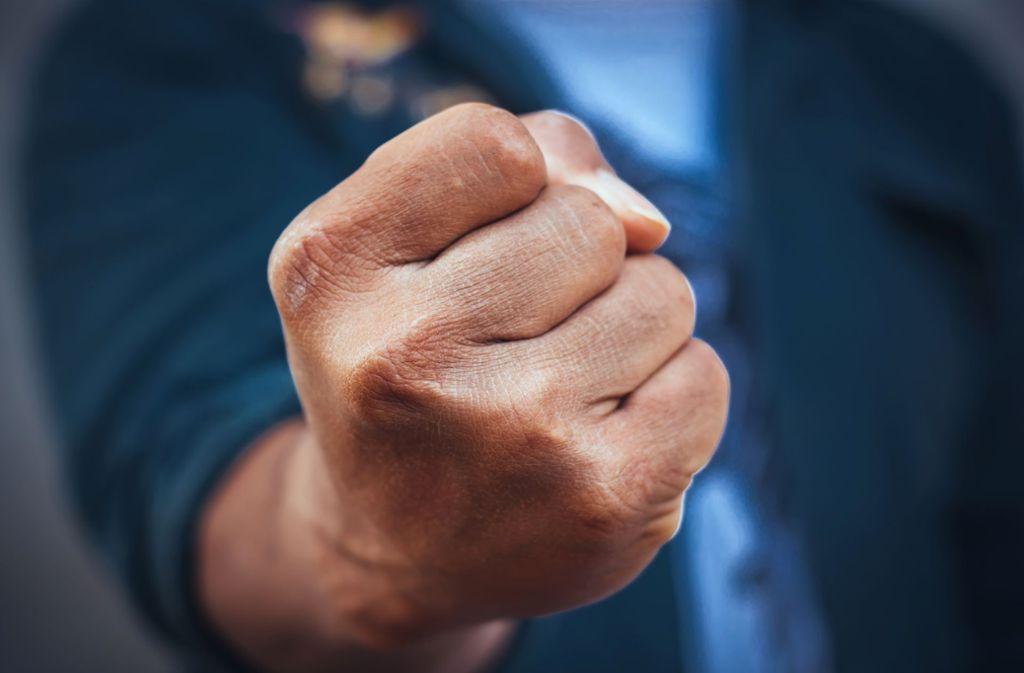 Wegen der merkwürdigen Fahrweise eines Mannes ist es in Bietigheim-Bissingen zu einer Schlägerei gekommen. (Symbolbild) Foto: Shutterstock/Sayan Puangkham