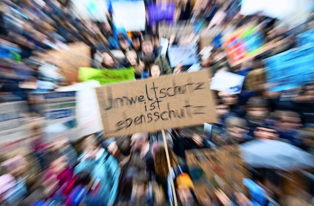 Die Schüler kämpfen für die Umwelt. Foto: dpa