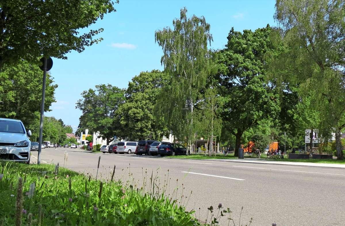 Die Osterbronnstraße gilt als Alltagsverbindung für Radfahrer und soll deshalb umgestaltet werden. Foto: Sandra Hintermayr
