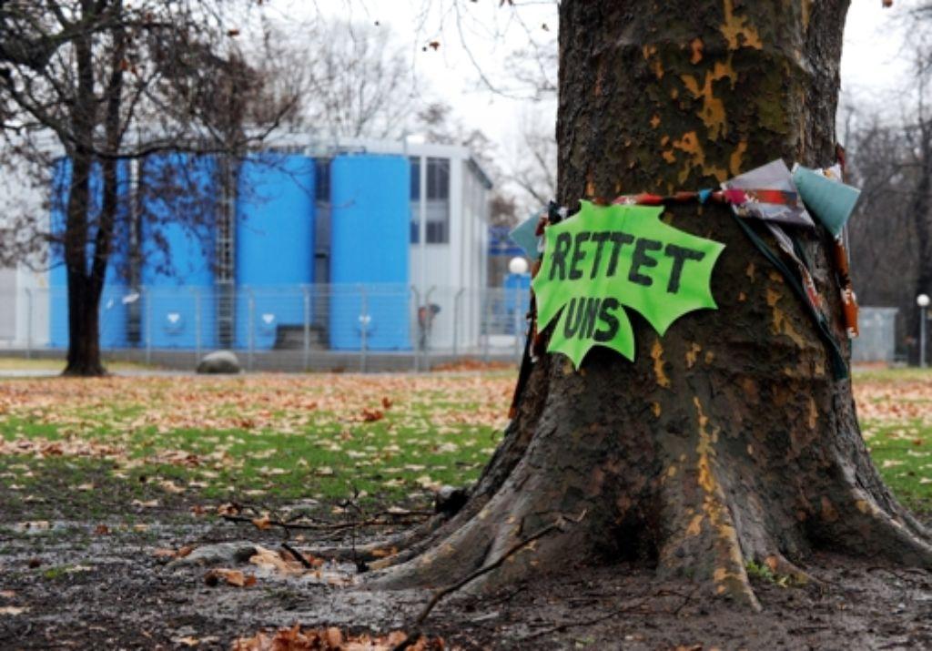 Von der nächsten Woche an will die Bahn 176 Bäume versetzen oder fällen lassen. Foto: dpa