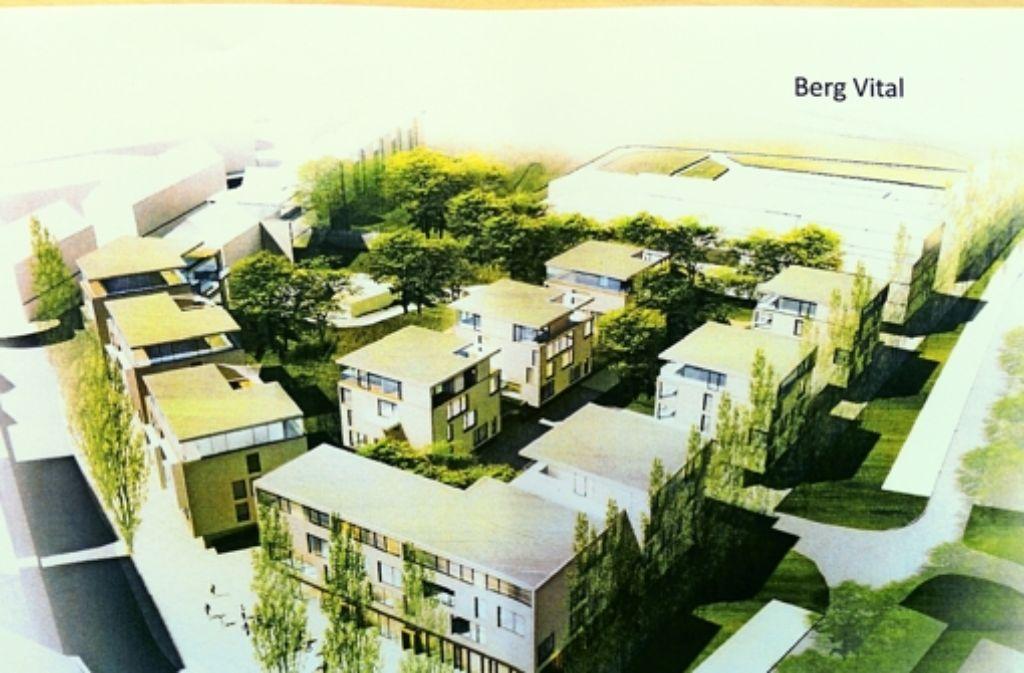 Eine Idee für den neuen Schwanenplatz: rechts oben das Mineralbad, links die Karl-Schurz-Straße. Foto: