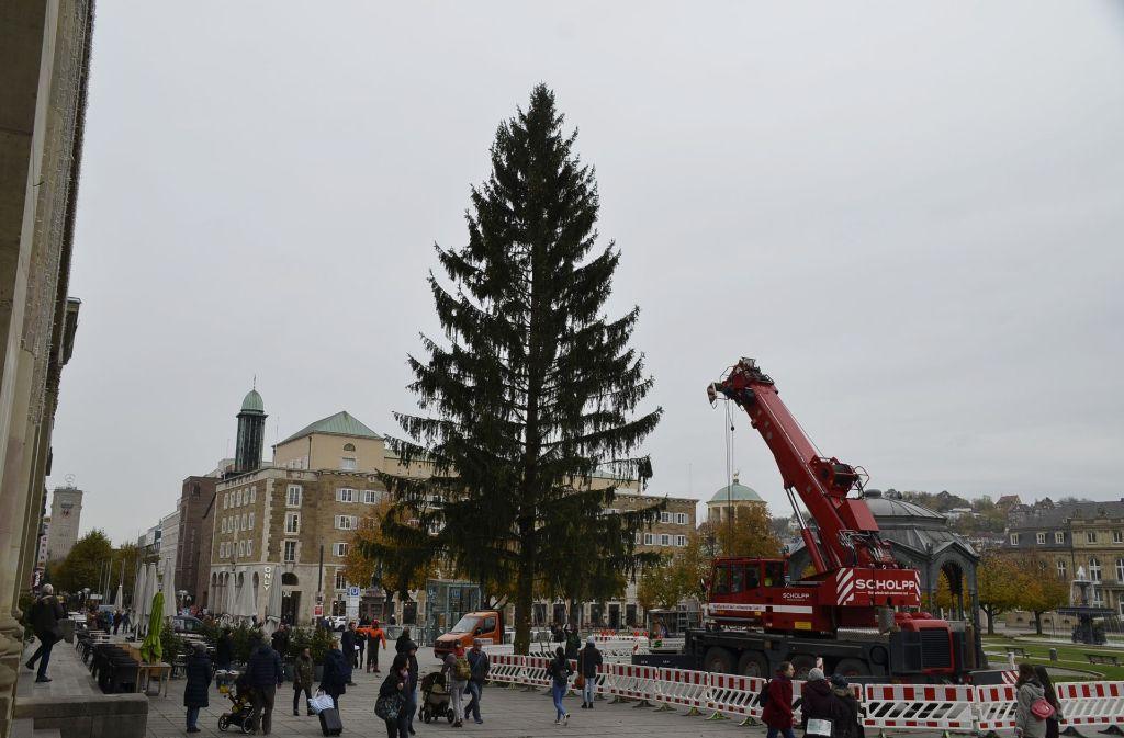 stuttgart weihnachtsbaum steht auf dem schlossplatz. Black Bedroom Furniture Sets. Home Design Ideas