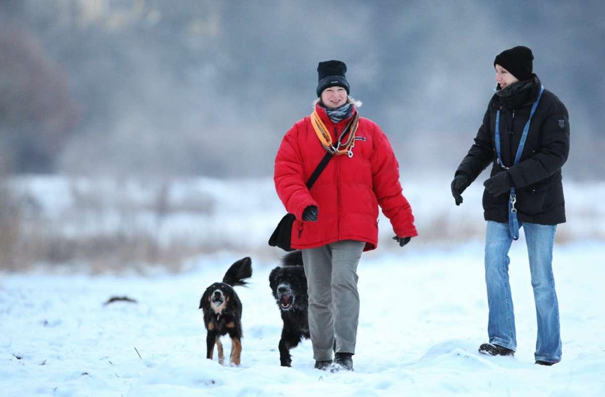 Es gibt sogar eine kleine Chance auf Schnee an den Feiertagen, dann würde der Dreck eh keine große Rolle spielen. Foto: dpa/Fabian Stratenschulte