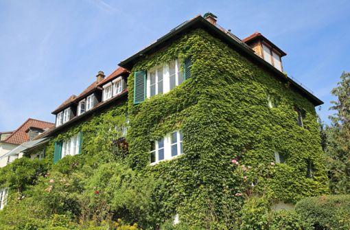 Hier blüht das grünste Haus der Stadt