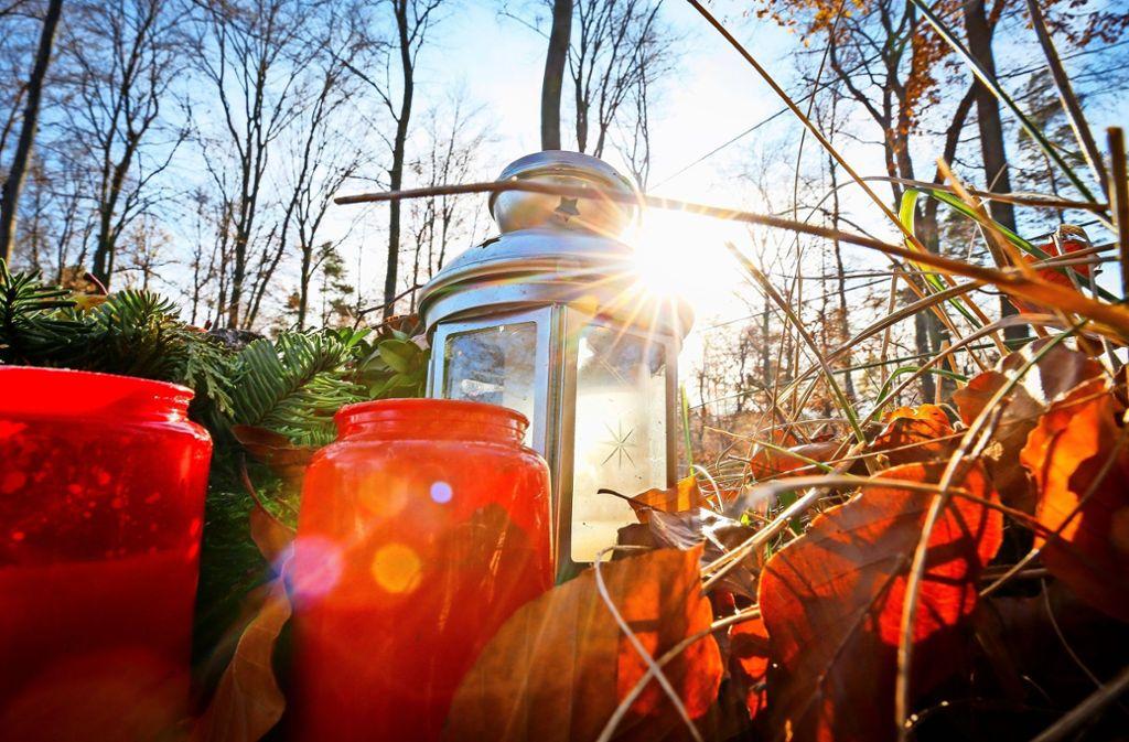 Auf dem Waldfriedhof gibt es jetzt mehr Plätze für die Ruhe unter Bäumen. Foto: factum/Granville
