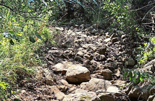 Der Ramsbach führt zurzeit kein Wasser