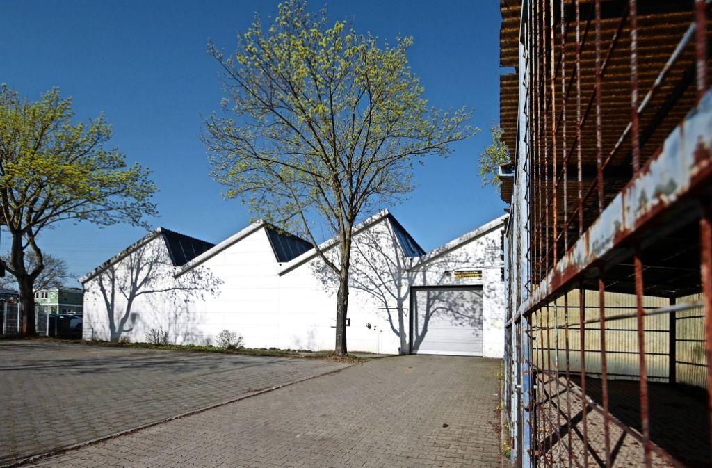 Von dieser Freiberger Gewerbehalle aus sollen künftig die Flüchtlinge im Landkreis verteilt werden Foto: factum/Granville