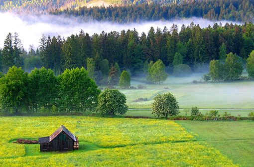 Nördlicher Schwarzwald: Natur erleben und entspannen