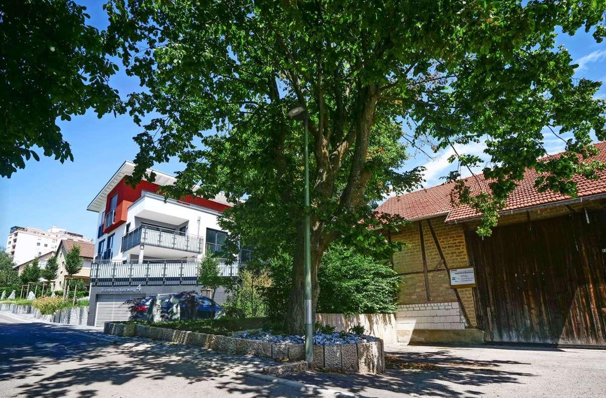 In Hirschlanden hat Altes neben Neuem Platz. Foto: Simon Granville