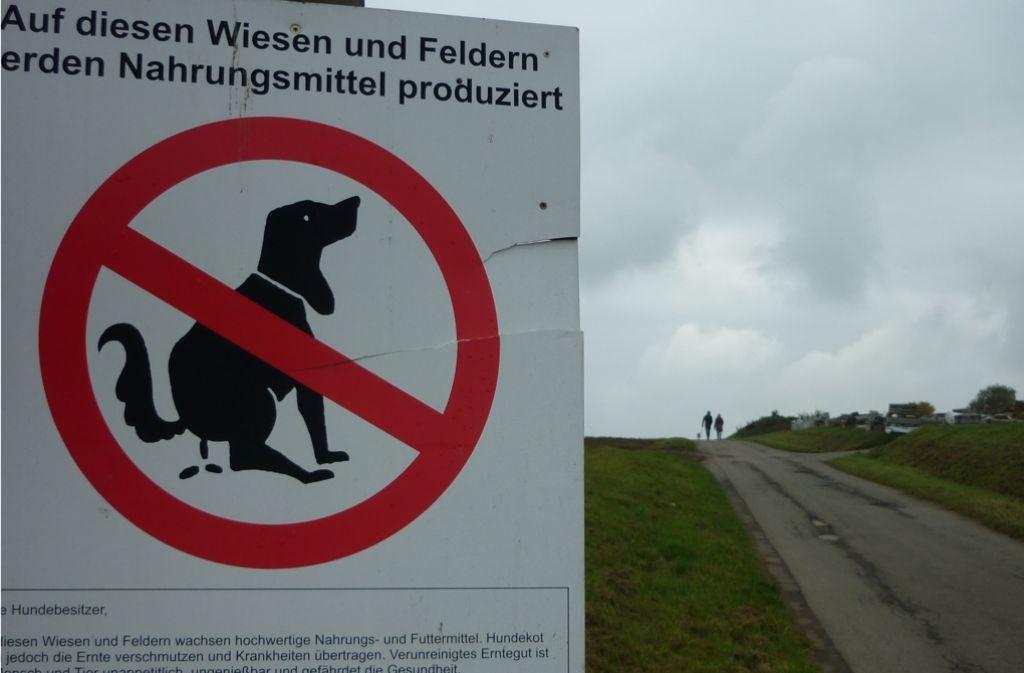 Landwirte appellieren , Wiesen und Felder von Hundekot freizuhalten. Foto: