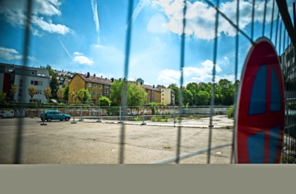 Auf der Brache bei der Foto: Lichtgut/Max Kovalenko