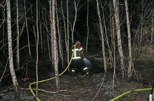 Feuerwehr zu Flächenbrand in Waldstück bei Altdorf ausgerückt