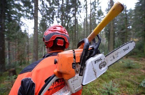 Mann stürzt bei Waldarbeiten in altes Grubenloch
