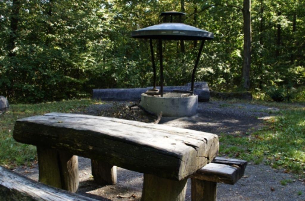 Der Grillplatz im Greutterwald ist rundherum von Wald umgeben und daher recht schattig. Somit ist er optimal für heiße Sommertage. Foto: Leonie Hemminger