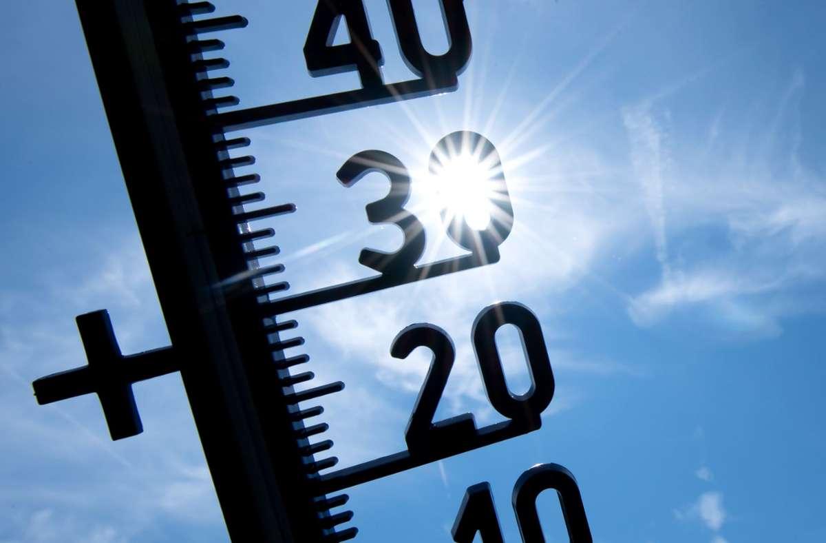 Bereits das bundesweite Temperatur-Maximum am Samstag war mit 38,2 Grad auf dem Trierer Petrisberg registriert worden. Foto: dpa/Sven Hoppe