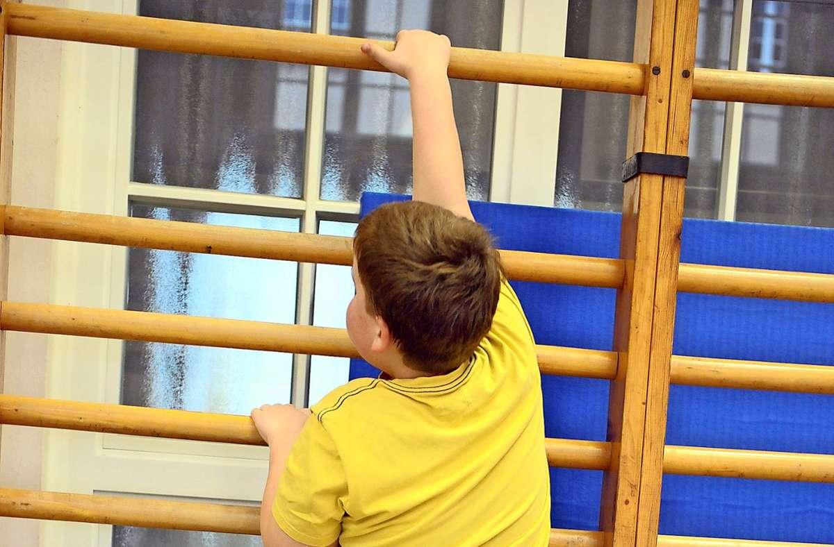 Kein gutes Zeichen: wenn schon leichte Übungen wie Klettern an der Sprossenwand Schwerstarbeit sind. Foto: dpa/Waltraud Grubitzsch, Baumann