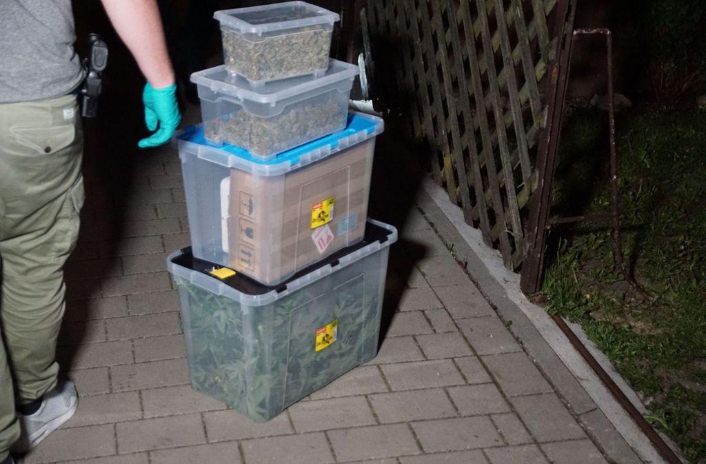Die Polizei stellte eine Cannabisplantage mit rund hundert Pflanzen sicher. Foto: SDMG
