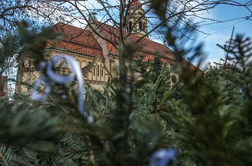 Winter bremst Christbaum-Abholer aus
