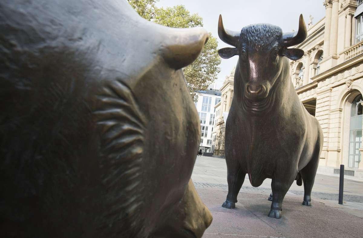 Bären als Symbol für fallende Kurse und Bullen für steigende Kurse: Die Turbulenzen an den Aktienmärkten sorgen für Nervosität. Foto: dpa/Frank Rumpenhorst