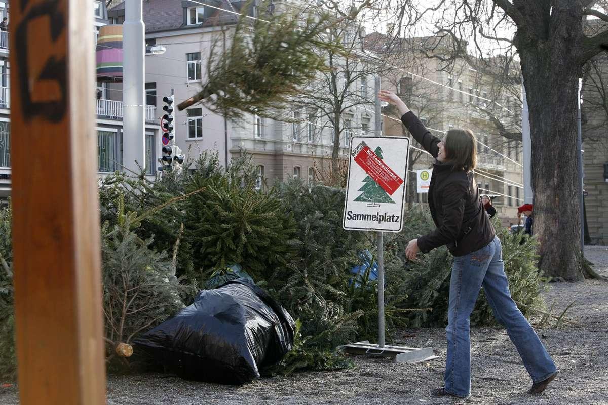Nur komplett schmucklos werden die Bäume an den örtlichen Sammelstellen angenommen.  Foto: Achim Zweygarth