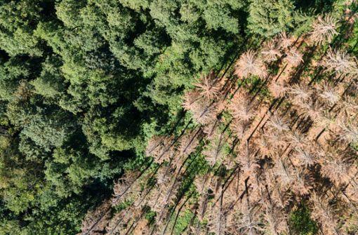 Gemeinden warnen vor Folgen des geringen Niederschlags