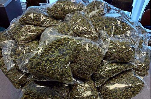 Vier Dealer mit 42 Kilo Marihuana gefasst