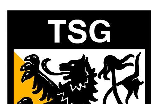 Schaal: Erst das TSG-Gelände bebauen