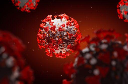 Wie Forscher  das Virus besiegen wollen