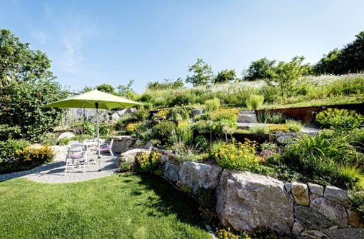 Gartenparadies für Schmetterlinge und Stauden