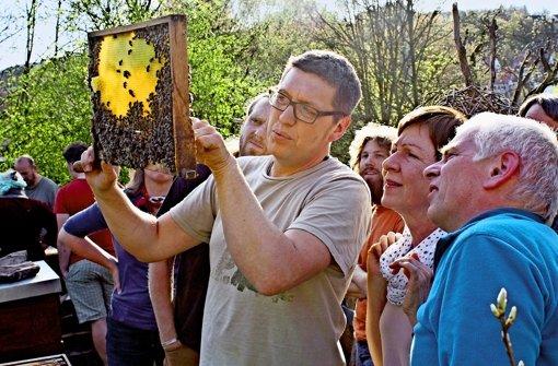 Die Honigernte ist zweitrangig