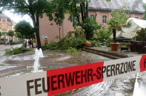 Baum fällt bei Gewitter um – vier Verletzte