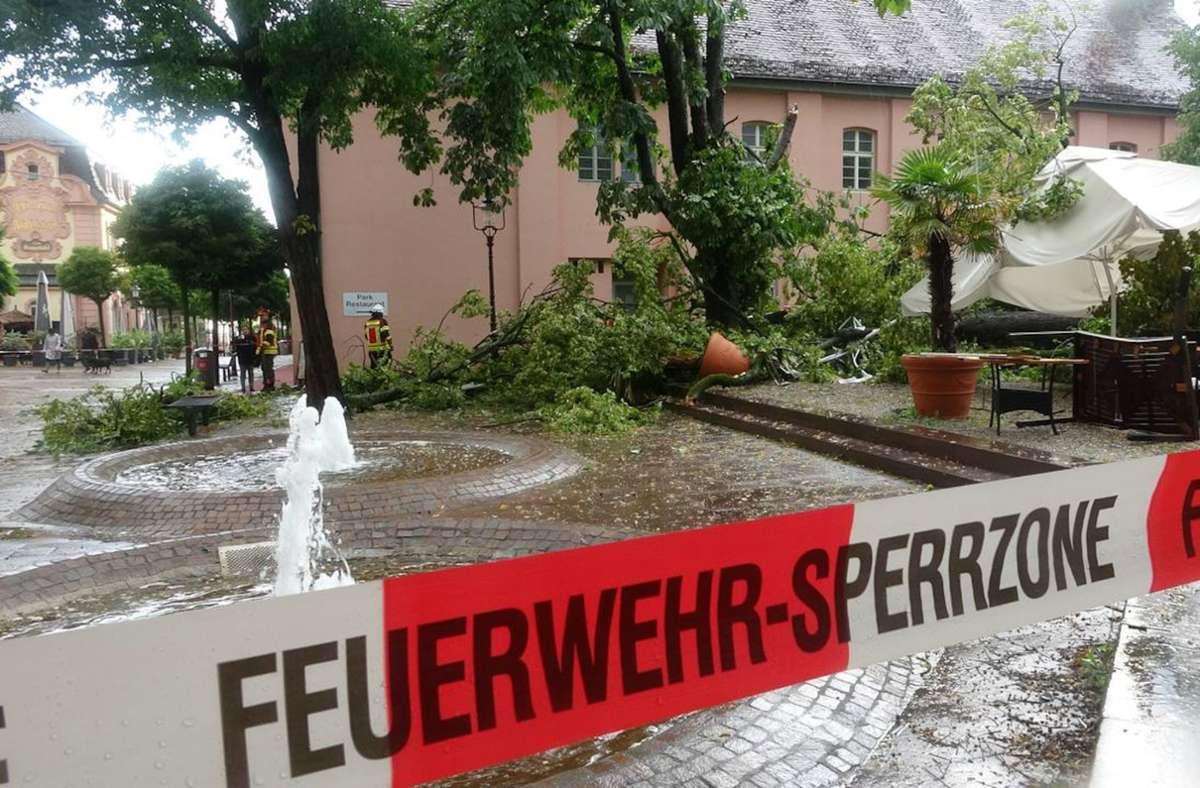 In Rastatt ist ein Baum bei einem Gewitter umgefallen. Foto: dpa/Henry Mungenast