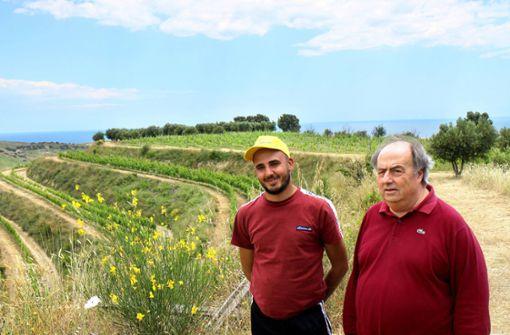 Weinbau gegen  die Mafia