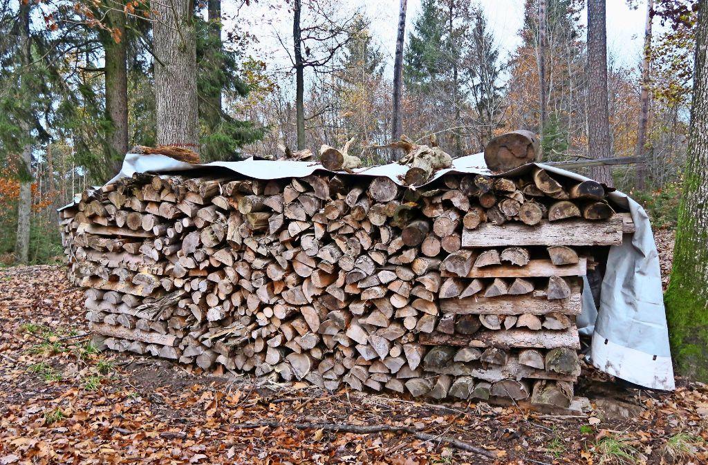 Mit dem Verkauf  von Holz will die Stadt im  kommenden Jahr 125 000 Euro erlösen. Foto: Malte Klein