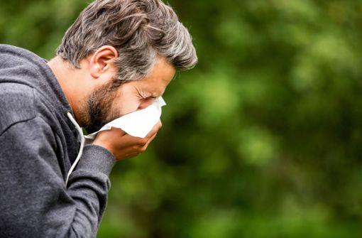 Was Allergiker  jetzt beachten sollten