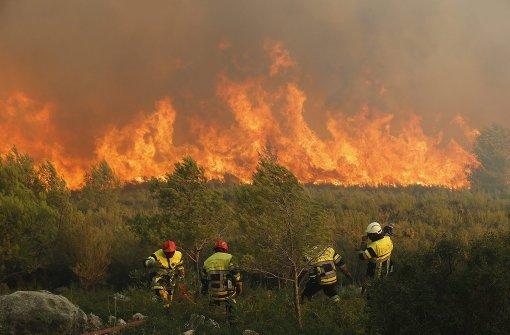 Feuer zerstört 250 Hektar Wald bei Marseille