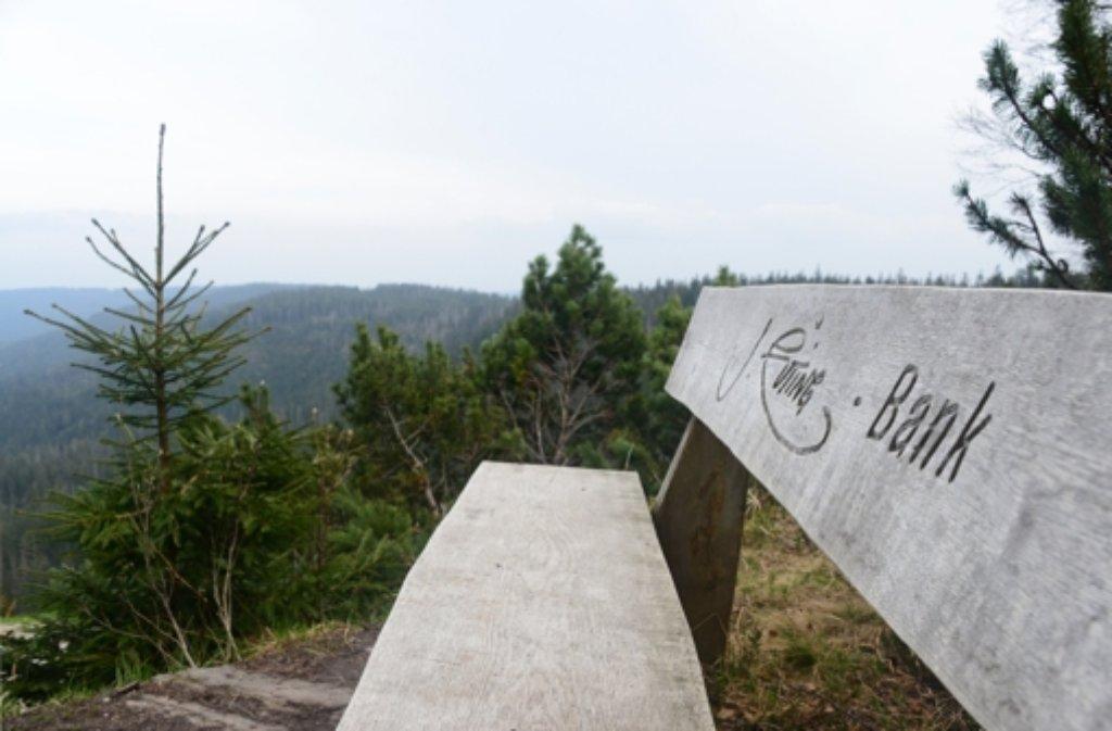 Der Krimi spielt im Nordschwarzwald. Foto: dpa