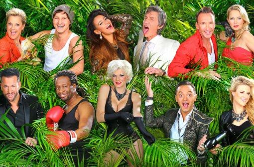 Diese elf Kandidaten ziehts in den RTL-Urwald