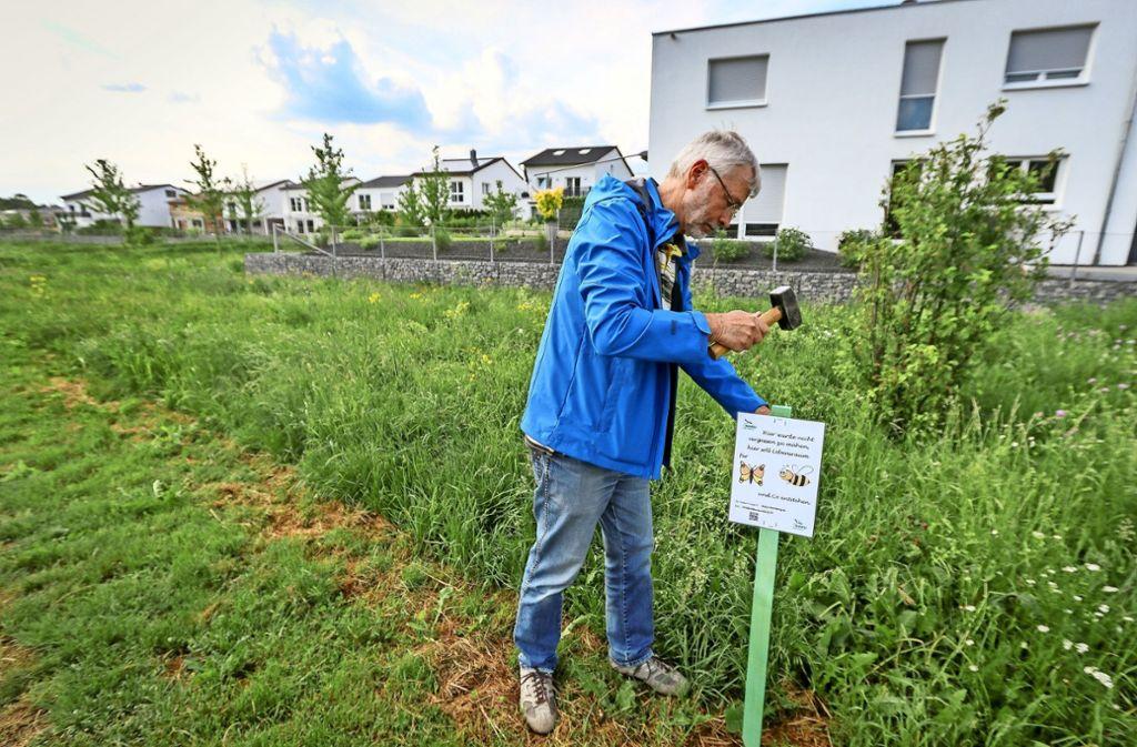 Rainer Selig vom Nabu Leonberg schlägt ein Infoschild ein. Foto: factum/Granville