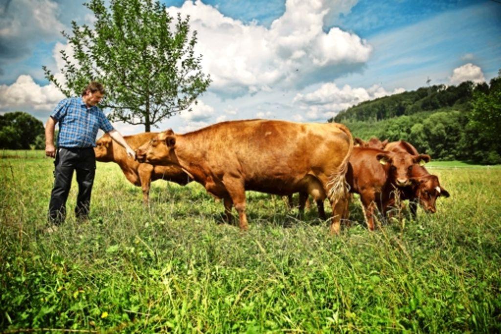 Der Direktvermarkter Gert Kerzinger aus Berglen hält Angusrinder. Er hofft  auf die Unterstützung des  Naturparks. Foto: Gottfried Stoppel