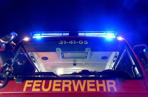 Stadtbahnfahrer löscht Laubfeuer