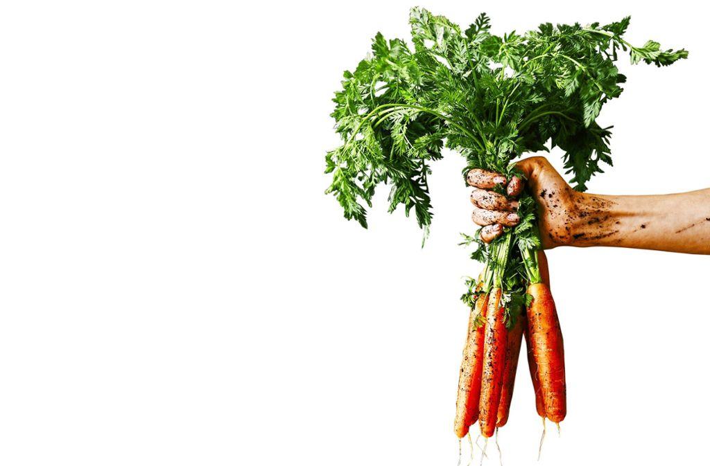 Meine Ernte erfüllt den Traum vom eigenen Gemüse. Foto: fedorovacz - stock.adobe.com
