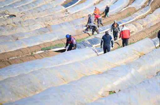 Landwirte in Baden-Württemberg haben Bedenken