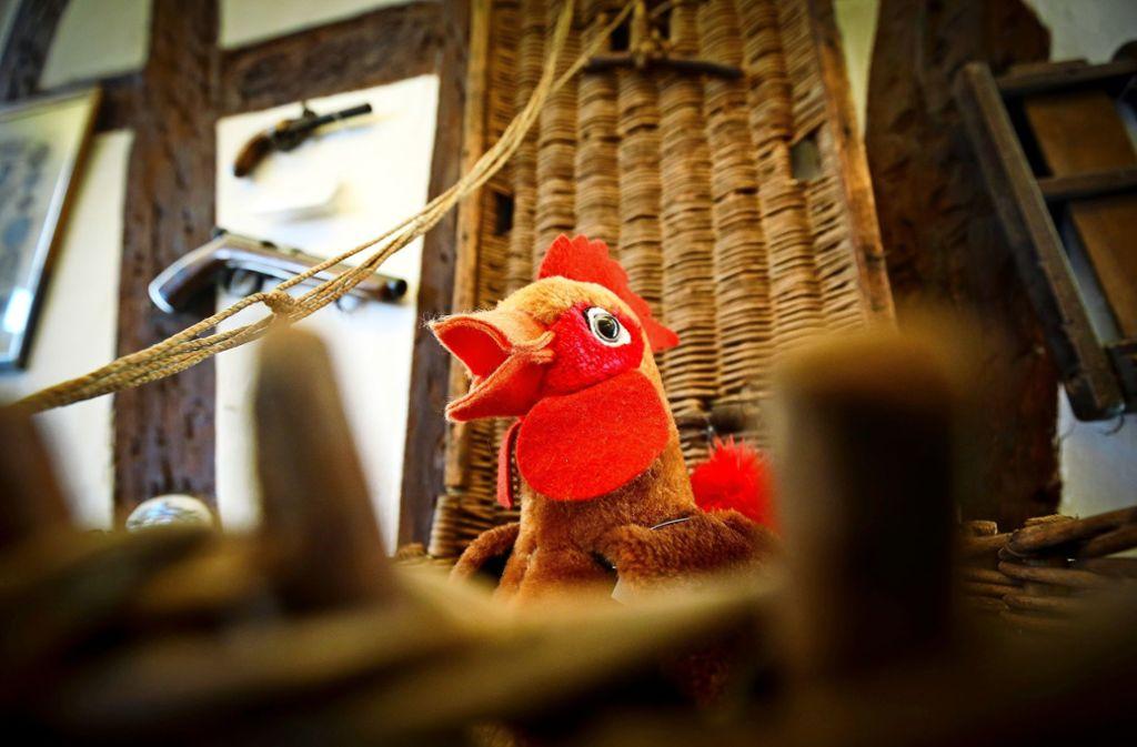 Der Hahn im Korb... Foto: factum Foto: