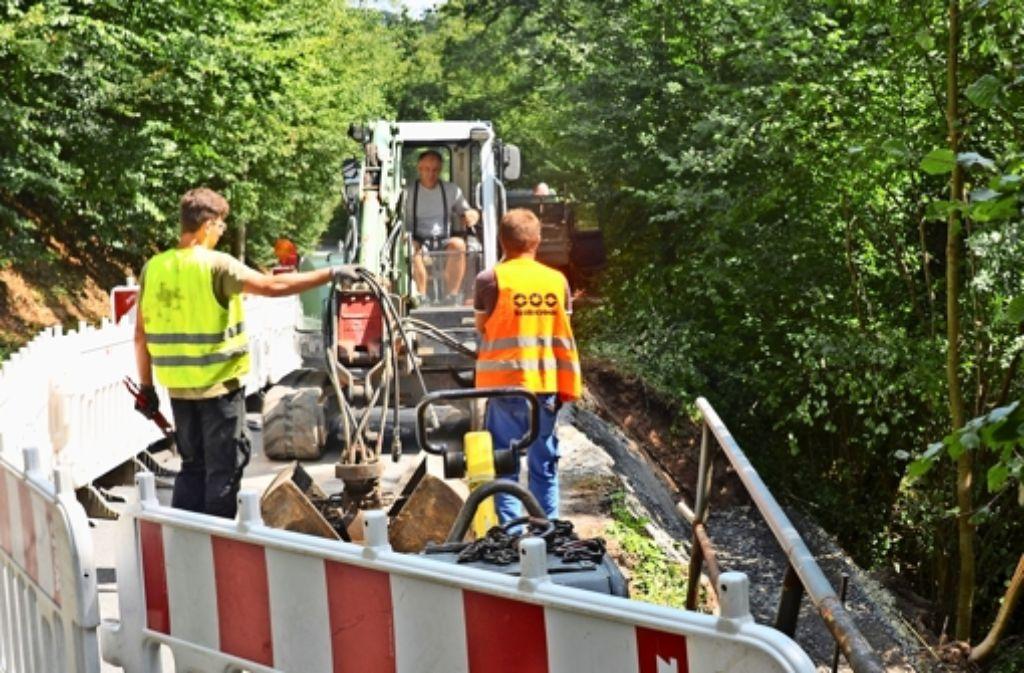 Der Gehweg an der Straße Im Elsental wird saniert. Die Böschung rutschte in der Vergangenheit immer wieder ab und beschädigte Fußgängerweg und Straße. Foto: Sandra Hintermayr