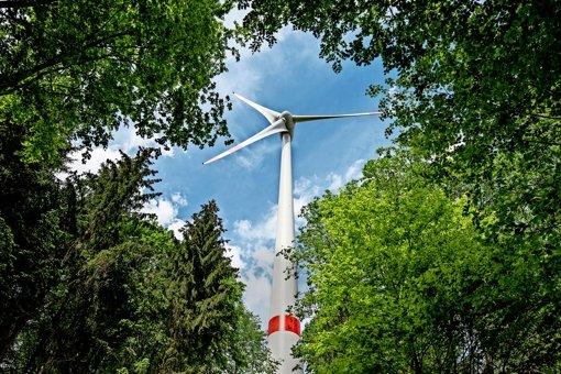 Im Wald sollen nicht so viele Windräder in den Himmel wachsen. Foto: dpa