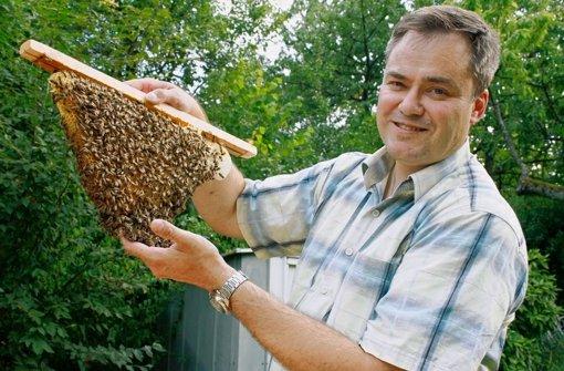 Tüfteln für das Bienenvolk