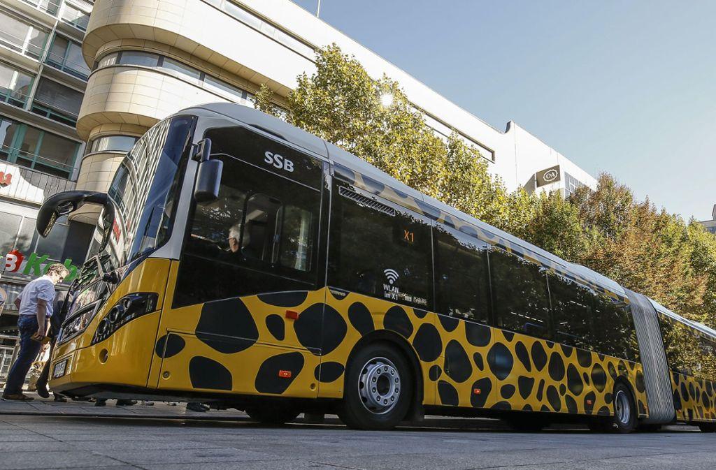 Im Oktober 2018 ging der auffällig gesprenkelte X 1 an den Start. Die Nachfrage nach dem Busangebot ist verhalten, inzwischen fahren teils kleinere Busse. Foto: Lichtgut/Leif-Hendrik Piechowski