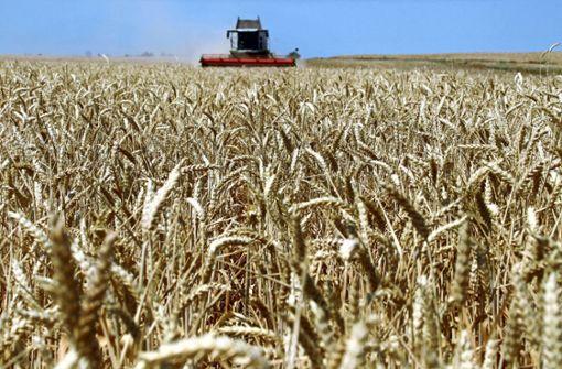 Bauern sind mit Ernte weitgehend zufrieden